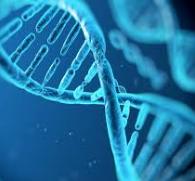 UH-Epigenetics-195X181
