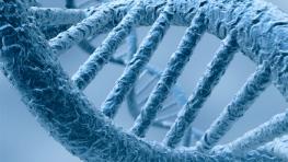 UH-Epigenetics-263x148